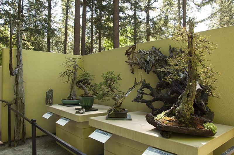 redwood etc