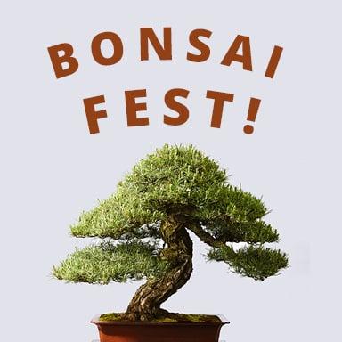 Bonsai Fest Pacific Bonsai Museum
